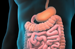 Colon Resection Animation